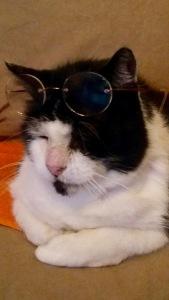 dorus-met-bril